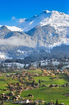 Grindelwald , Switzerland 