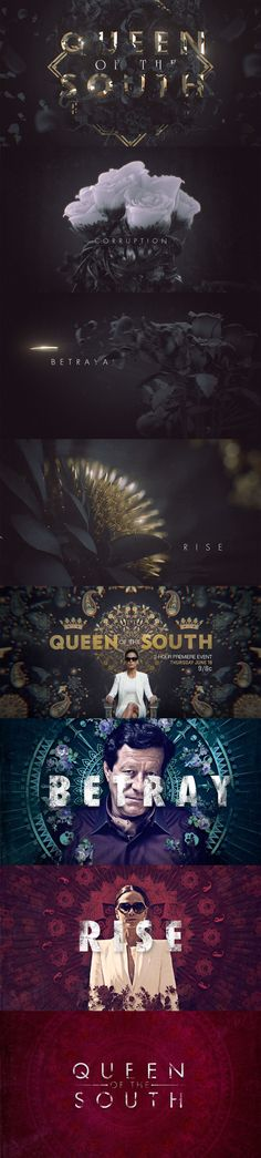 https://www.behance.net/gallery/53376843/Queen-Of-The-South-AE