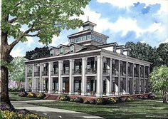 Elevation of Colonial   Plantation   Southern   House Plan 61080