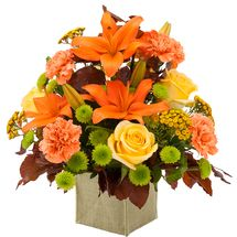 Autumn Sunset-Flower arrangements, holiday plants, centerpieces, and gift baskets from Ray Hunter Florist, Garden and Christmas Shop. We deliver anywhere! Visit the our Christmas Wonderland Store for high-quality holiday decor, trims, and floral offerings in Southgate, Michigan at 16153 Eureka or call 734-285-2400.
