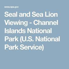 Seal and Sea Lion Viewing - Channel Islands National Park (U.S. National Park Service)