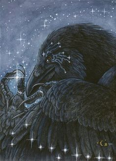 Star Catcher by *Goldenwolf Raven, envious of the night sky, waits for stars to fall from the heavens. When they do he collects them and adorns himself with the sparkling gems so that he may be as beautiful as a night full of stars.