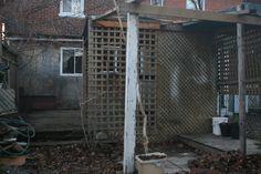 2007-03-27i - Backyard Post-Cleanup-XL.jpg (1024×683)