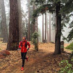 Good Morning! Time to go & explore some trails.  #Trail #Tree #Travel #Adventure #Outdoors #Earthpics #TrailRunning #Running  #SuuntoRun