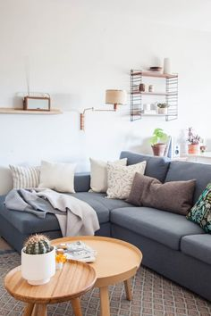Warm gray walls- apartment in Amsterdam