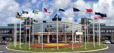 Caricom apoya el diálogo y condena la violencia en Venezuela Naciones como San Vicente y las Granadinas, Antigua y Barbuda y Dominica han hecho un llamado a la comunidad caribeña a no interferir en los asuntos internos del país