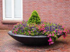 27 Inspiring Flower Planters and Pots - Garden Lovers Club Large Planters, Flower Planters, Garden Pots, Garden Ideas, Houseplants, Container Gardening, Backyard, Nature, Flowers