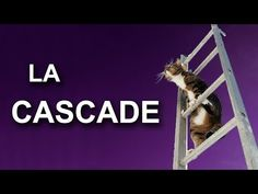 La cascade - YouTube