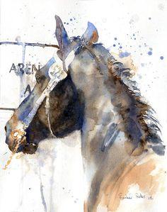 PRINT Friesian Morgan Warmblood Gelding horse art watercolor Painting