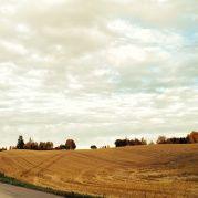 YWAM Grimerud - harvested fields Fields, Vineyard, Country Roads, Life, Outdoor, Outdoors, Vine Yard, Vineyard Vines, Outdoor Games