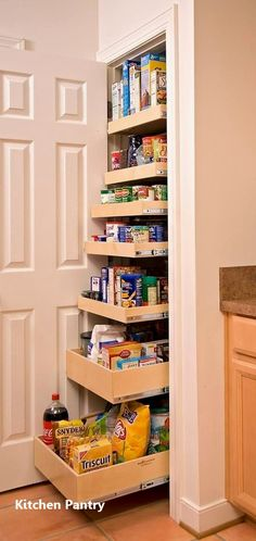 35 Best Small Kitchen Storage Organization Ideas and Designs for 2019 - kitchen pantry Kitchen Pantry Design, Kitchen Pantry Cabinets, Small Kitchen Storage, Kitchen Cabinet Organization, Cupboard Storage, Closet Storage, Storage Cabinets, Kitchen Small, Storage Shelves