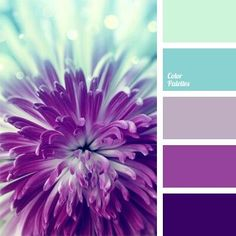 Palette of cold floral shades of blue and purple, translucent and saturated: hydrangea, lilac, fuchsia. Perfect palette for spring jewelry! Colour Pallette, Color Palate, Colour Schemes, Color Combos, Purple Color Palettes, Wedding Colour Palettes, Wedding Colors, Purple Paint Colors, Purple Palette