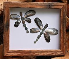 Dragonflies www.saltandpebbles.com