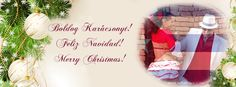 Feliz Navidad! www.salsatropical.hu