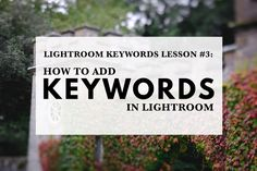 In this lesson you'll learn how to add keywords to photos in Lightroom. Adding keywords makes it much faster to find important photos in a search.