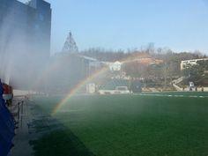 Rainbow of 200millions won.... WoW