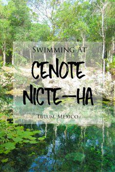 Swimming At Cenote Nicte-Ha in Tulum, Mexico | brittanymthiessen.com