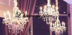 Chandelier, Ceiling Lights, Lighting, Home Decor, Balance Sheet, Livres, Room Decor, Ceiling Lamp, Chandeliers