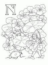 alphabet elfes n