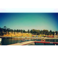 Oh to be young again!!..........#geelong#geelongwaterfront#easternbeach#sunday#spring#notacloudinthesky by dillidallidayz http://ift.tt/1JtS0vo