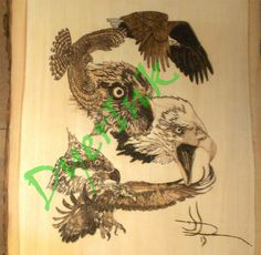 """This is """"Birds of Prey"""" - $300.00 - woodburned on basswood."""