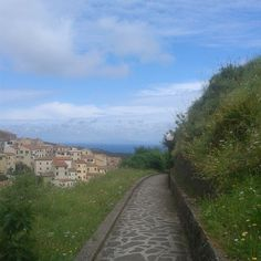 #ShareIG #Rionellelba passeggiata panoramica #isoladelba #elbaisland #elba200 #Ilikeitaly #instaElba  #ILoveElba