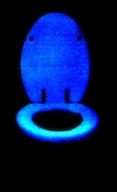 Glow in the dark toilet seat!