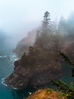 A foggy day in Samuel H. Boardman State Park Oregon [OC][2233x3000]http://ift.tt/2GC7JxY