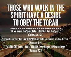 Obey the Torah