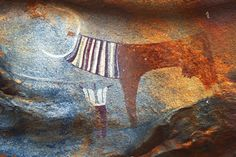 Painted image of long-horned cow with human figure underneath, Laas Geel, Somalia. (Photograph © TARA/David Coulson).