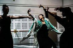 El Ballet Nacional de España celebrará el Día Internacional de la Danza 2016 con ensayos abiertos al público