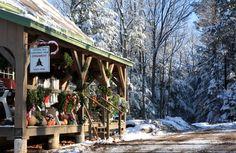 Wixon Builders, Keene, NH, Home Construction, Interior Trim Christmas Tree Farm, Christmas Store, Country Christmas, Christmas 2019, Christmas Wreaths, Christmas Ideas, Xmas, Mini Farm, New Home Construction