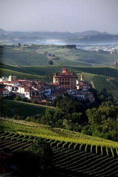 #Barolo, Cuneo, Italy Piemonte