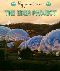 The Eden Project, a wonderful charity located in Cornwall, is home to two giant biomes which host the world's biggest indoor rainforest as well as countless plant species from Mediterranean zones. It also features an outdoors botanic garden, as well as plenty of adrenaline pumping activities. Would you like to meander through baobabs and banana trees? Learn more about the Eden Project...