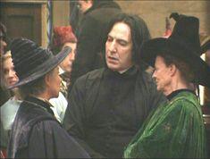 Harry Potter Cast, Harry Potter Universal, Harry Potter Characters, Professor Severus Snape, Draco Malfoy, Butterfly Place, Hp Movies, Bellatrix Lestrange, Harry Potter Wallpaper