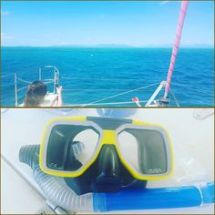 ITS MY BIRTHDAY!  what better way to spend it than snorkling on the great barrier reef. We were lucky enough to see a shark and giant turtles as well as blue starfish and sea cucumbers!  #greatbarrierreef #queensland #cairns #snorkling #sun #traveling #travel by lili_jessie13 http://ift.tt/1UokkV2
