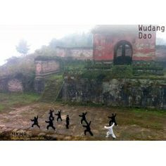 The Wudang Dao Kung Fu Institute founded by Master Bing, who is a 15th generation practitioner of the San Feng school of Wudang Kungfu.