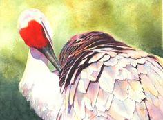 Watercolors - Adams Art Studio