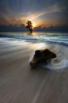 long exposures are beautiful!  via Daniella