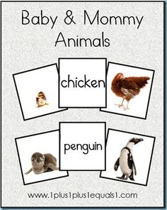 Baby animals and their mothers preschool ideas Tierbabys und ihre Mütter Kindergarten Ideen Mama Baby, Mom And Baby, Fun Baby, Animal Activities, Learning Activities, Preschool Activities, Preschool Projects, Preschool Learning, Animal Matching Game