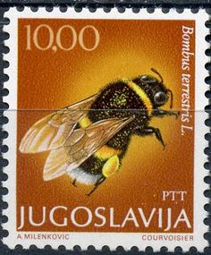 Bees - Honey Bee Stamps, Beekeeping, Apiculture - Stamp Community Forum - Page 2