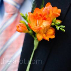 Orange freesia buttonholes?