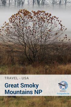 Die letzte Etappe auf unserer Südstaatenreise hatte nichts mit Motorsport zu tun. Es ging in die Natur, in den Great Smoky Mountains National Park. Wer in dem Park tiefe, spektakuläre Canyons oder brodelnde Geysire erwartet, ist dort falsch. Der Park bietet eine traumhafte Natur, mit unendlichen Wäldern in den Bergen und tolle Aussichten auf die wunderschöne Landschaft. Bei unserem Besuch boten die Wälder einen besonders farbenfrohen Anblick, auch in den Südstaaten gibt es einen Indian…