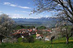 Fraxern, Austria [3008x2000]
