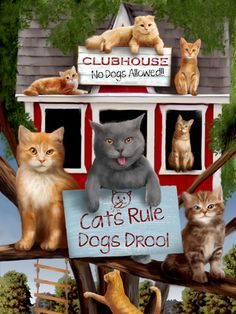 CATS RULE BY THOMAS WOOD