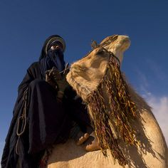 tuareg | Tuareg and camel in libyan desert - Libya