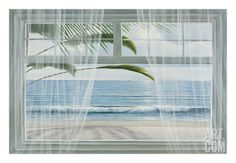 View of the Tropics Art Print by Diane Romanello at Art.com