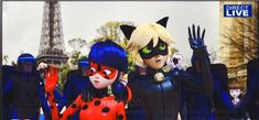 miraculous ladybug | I love this gif. I'm look at the poor little awkward thing