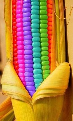 chasingrainbowsforever:  Rainbow Corn on the Cob  ;)