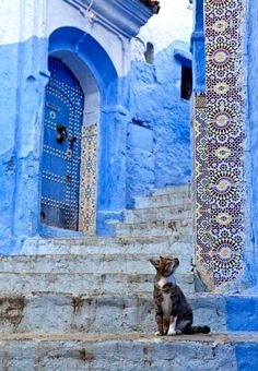 Chefchaouen, Morocco ,from Iryna